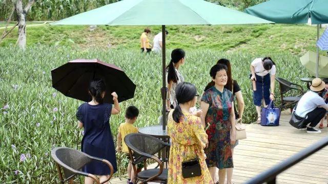 陆河螺溪谷在端午节假期日接待超2000游客